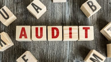 Photo of Why an audit is necessary for the company website?