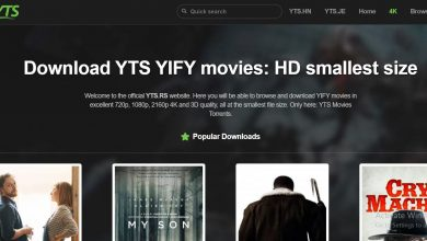 Photo of What Is YIFY Torrents All About?